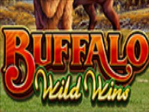 Buffalo Wild Wins